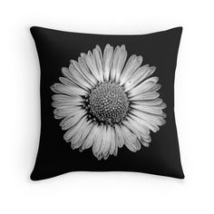 Home sweet 25% off Pillows, Tapestries, & Duvet Covers. Use code SWEETHOME25  Retro Daisy by tanjica  black-and-white photo of daisy flower macro on black background, elegant,stylish,trendy,simple,monochromatic
