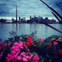 http://cherylhoward.com/2013/07/27/my-top-ten-instagram-photos-ever/  #toronto #canada #instagram