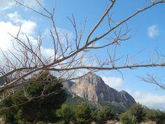 Puig Campana desde el rastro de Polop