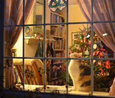 From poisonous plants to dangerous decorations, learn the top dangers lurking in your home this holiday season — and how to keep your dog or cat safe.
