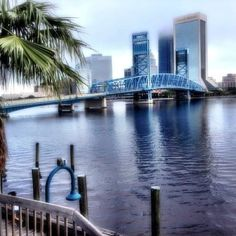 Jacksonville fl from the river walk