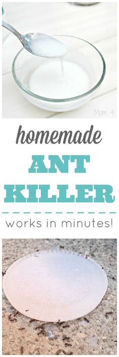 Homemade Ant Killer - Works In Minutes!   1/2 cup Sugar, 3 Tbls of Borax and enough water to make a fairly thick paste. The ants will take it back to the nest and all will die!