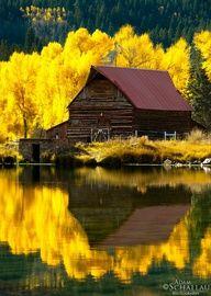 Golden reflection  Adam Schallau Photography