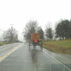 Amish buggy. New Wilmington,  Pa.