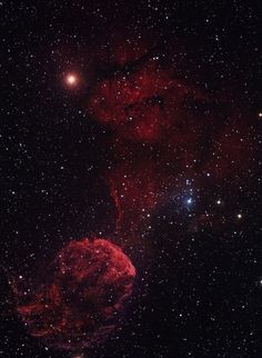 The Jellyfish Nebula, one of the best-studied cases of SNR