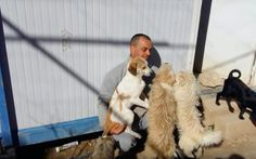 From Starving and Abused to Thriving and Loved, How One Man (Theoklitos Proestakis) is Changing the World for Greek...