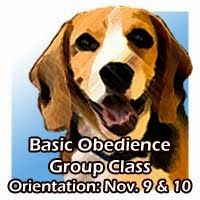 Basic Obedience Group Class Orientation is on Nov. 9 & Nov. 10