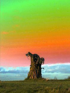 "Saatchi Online Artist TOULA MAVRIDOU-MESSER; Photography, ""Pop Art - Twig Wizard"" #art"