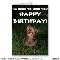 Shop I'm Here To Wish You HAPPY BIRTHDAY Greeting card created by WonderBubble. Happy Birthday Greeting Card, Birthday Wishes, Wish You Happy Birthday, Love You, My Love, Custom Greeting Cards, Thoughtful Gifts, Are You Happy, Cute Animals