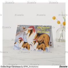Collie Dogs Christmas Holiday Card