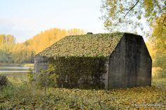 Bunker in de Dordtse Biesbosch