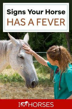 As our horse's caregiver, it's important for us to know when our horses are under the weather. Here are the signs your horse has a fever. | #ihearthorses #horsehealth #horses