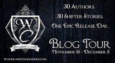 Rebel & Angel's Book Reviews and Promos: Blog Tour: Broken Wings  Mindy Larson  @larsonmind...