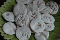 Nature impressions craft. Use sculpey or salt dough. Imprint with seeds, plants, shells, etc.