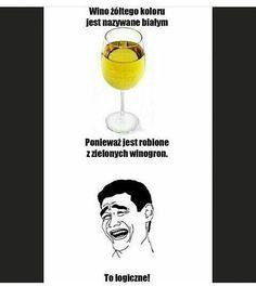 Memy, a czego się spodziewałeś?   Julek na okładce ajaj <3 #losowo # Losowo # amreading # books # wattpad Polish Memes, Funny Mems, Dead Memes, Wtf Funny, Read News, Funny Photos, Things To Think About, Haha, Geek Stuff
