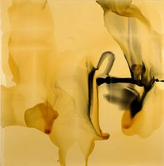 """The """"paradox"""" is only a conflict between reality and your feeling of what reality """"ought to be""""  Paintings by Dale Frank"""