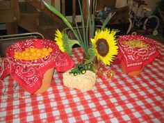 Farm Party Table Centerpieces