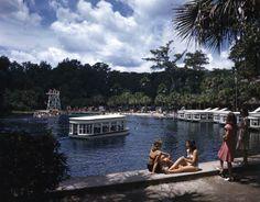 Silver Springs: Ocala, Florida | Flickr - Photo Sharing!