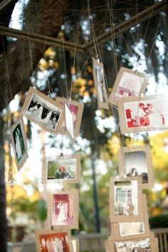 Hanging Pictures From Trees At Wedding