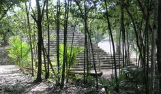 Coba Mayan Ruins, Mexico=  need to go!