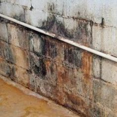 Awesome Mold On Cinder Block Basement Wall
