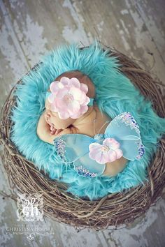 SET Aqua Fur and Wood Branch Nest Owl Bird Photography Prop Newborn Baby