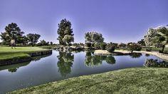 Ocotillo Golf Resort in Chandler, AZ