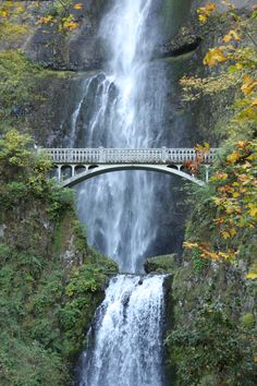 multnomah falls, about 30 miles east of portland.