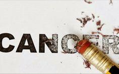 αλεπού του Ολύμπου: 7 στρατηγικές κινήσεις ενάντια στον καρκίνο...???