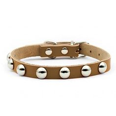 High-Quality Studded Genuine Leather - Dog Collar - Puppy Pet Collar - With Adjustable Buckle Closure - 5 Colors and 4 Sizes to Choose >>> Don't get left behind, see this great dog product : Collars for dogs