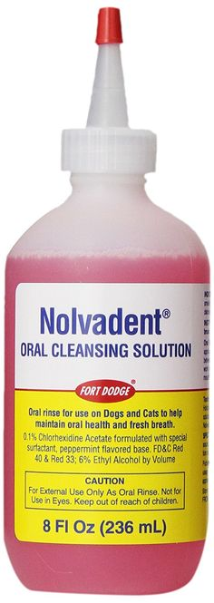 Fort Dodge Animal Nolvadent Oral Cleansing Solution Bottle, 8-Ounce ** New and awesome cat product awaits you, Read it now  : Cat Supplies