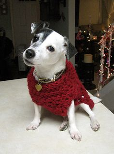 Ravelry: Granny Square Dog Sweater pattern by Shiri Mor--not sure arm holes are open enough