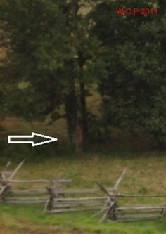 This is possible paranormal evidence on film. Taken in Gettysburg, there was no person present here where someone appears to be standing near the trees. This pinner agrees. Have witnessed activity in the Gettysburg battlefield also. Ghost Images, Ghost Pictures, Creepy Pictures, Ghost Pics, Spooky Places, Haunted Places, Gettysburg Ghosts, Paranormal Pictures, Ghost Sightings
