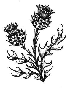 thistle scottish masonry on broadriver377.com