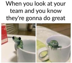 When this frog understood the importance of teamwork. | 27 Times Tumblr Was Beautifully Wholesome