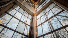 Treehouse Hotel, Lookout Mountain, Vacation Trips, Vacations, A Boutique, Glamping, Natural Beauty, City, Nature