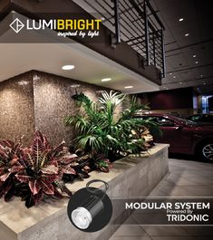 Fits in most existing / halogen luminaires 10 W LED Equivalent to 50 W halogen with higher lumen output Perfect solution for / replacement project Module with integrated electronic, heatsink and optics SYSTEM Led, Lights, Inspiration, Design, Light Fixture, Biblical Inspiration, Lighting, Inspirational