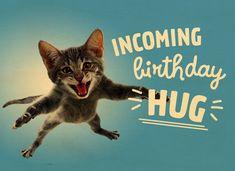 Kaarten - verjaardag tiener jongen - algemeen t | Hallmark Cool Happy Birthday Images, Happy Birthday Animals, Happy Birthday Wishes For A Friend, Birthday Hug, Funny Happy Birthday Wishes, Funny Birthday Cards, Happy Birthday With Cats, Happy Birthday Coworker, Birthday Humorous