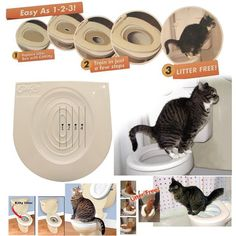 Cat Training Tips Easy to Learn Cat Toilet Training Kit Training and Behaviour Aids drop shipping Puppy Potty Training Tips, Cat Toilet Training, Training Kit, Training Your Dog, Training Schedule, Animal Gato, Mundo Animal, Puppy House, Litter Box