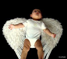 New Born & Baby's Need cuter wings lol