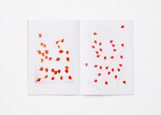 tomatoberry | coton design