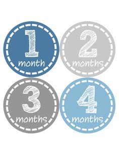 Baby Boy Monthly Milestone Birthday Stickers 12 Month Photo Shirt Sticker #055