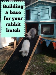Build a Raised Base for a Rabbit Hutch -- Build a base for your rabbit hutch to gain storage, make clean up easier, and to keep your rabbits safe from predators and the elements