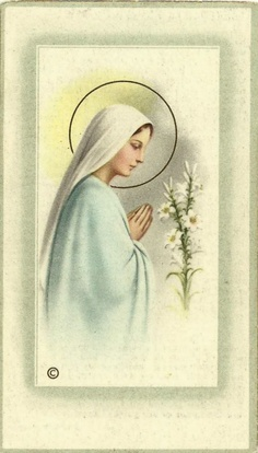 Prayer to the Blessed Virgin:   Hail Mary, full of grace, the Lord is with thee; blessed art thou amongst women, and blessed is the fruit of thy womb, Jesus. Holy Mary, Mother of God, pray for us sinners, now and at the hour of our death. Amen. - Luke 1:28-35, 42-48