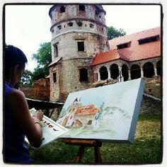 The Bethlen Castle Carpathian Mountains, Famous Castles, Fortification, Mountain Landscape, Palaces, Romania, Scenery, Wildlife, Explore