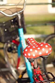 The bicycle is a curious vehicle. Its passenger is its engine. ~John Howard