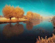 La natura in una foto
