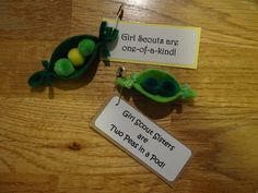 10 Two Peas in a Pod Girl Scout SWAP or Craft Kits