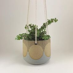 Hanging planter from my last batch of planters. Pottery Pots, Ceramic Pottery, Pottery Workshop, Ceramic Planters, Clay Planter, Pottery Designs, Painted Pots, Hanging Planters, Flower Pots