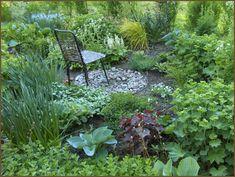quun puutarha: Puutarha